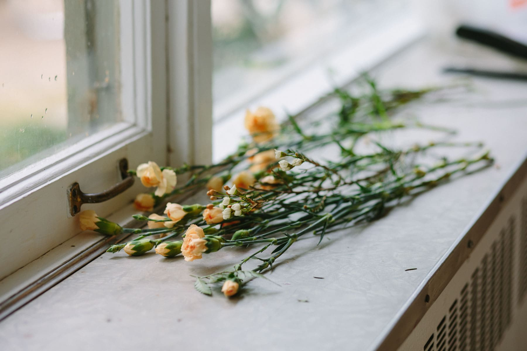 Wild flowers on windowsill, Artscape, Toronto Island wedding photos