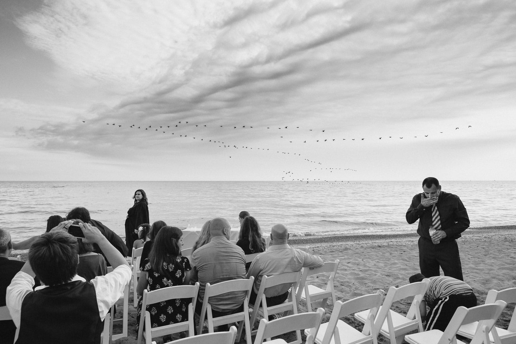 Migrating birds in sky at beach wedding, Artscape, Toronto Island wedding