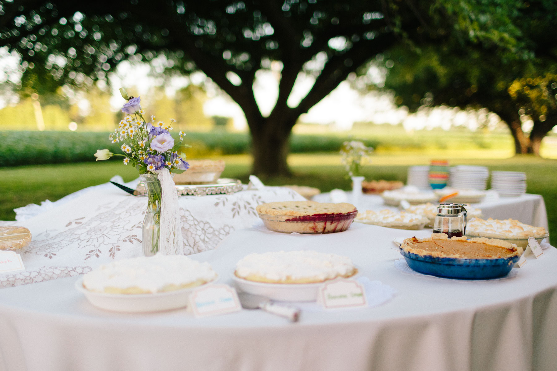 A dessert table full of pies and some violet flowers, outside at a rural farm wedding.