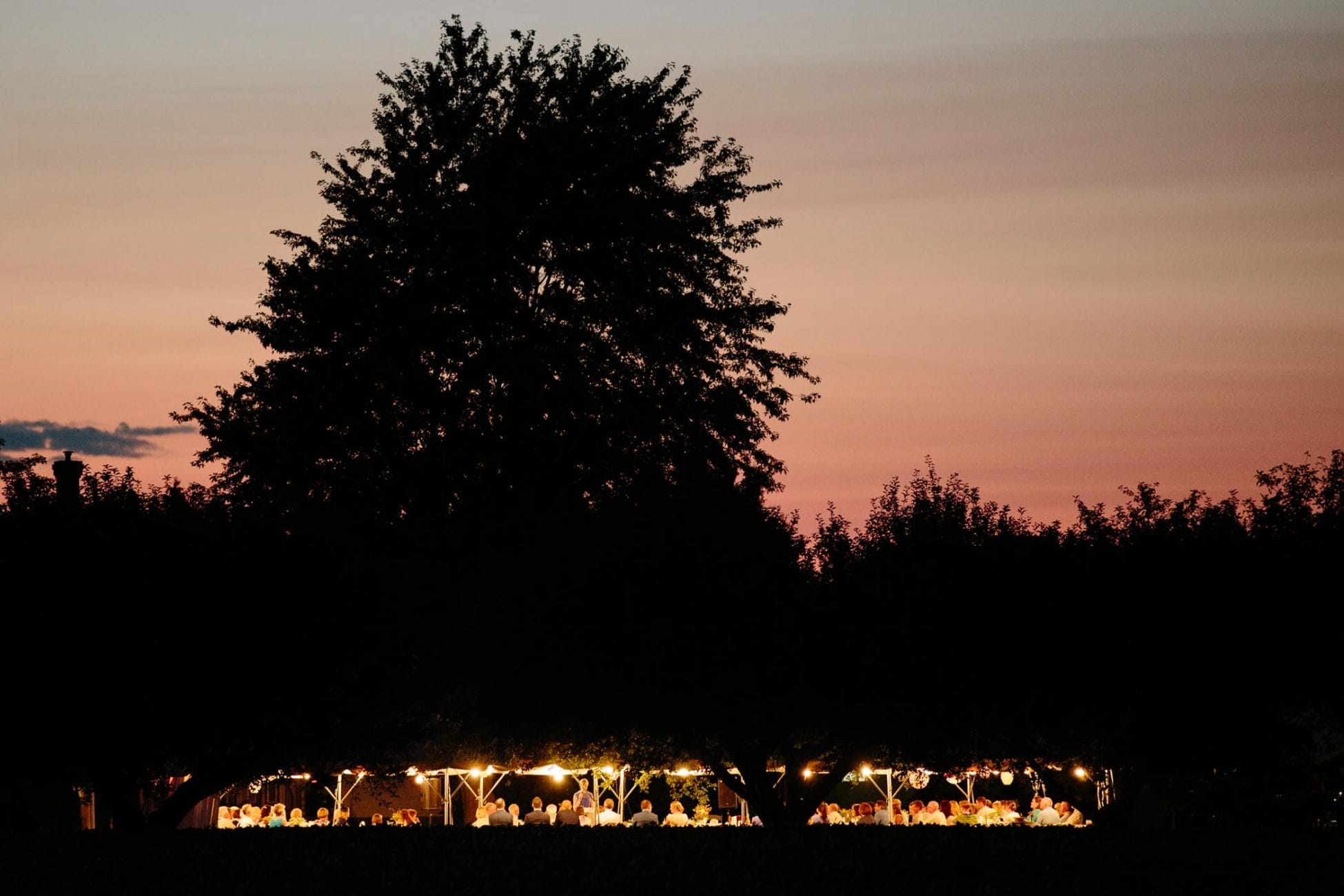 A twilight silhouette of distant large tree over glowing party tent wedding reception on a farm in rural Ontario. Documentary wedding photographer Pavel Kounine.